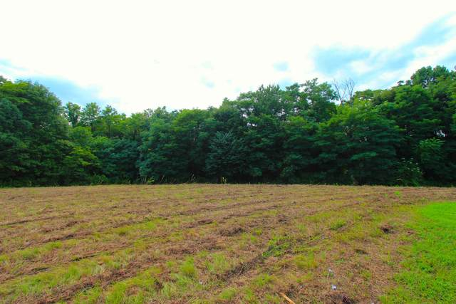 0 Jones Hollow Rd, Westmoreland, TN 37186 (MLS #RTC2170824) :: PARKS