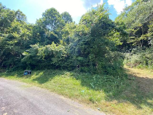 0 Panorama Heights, Gainesboro, TN 38562 (MLS #RTC2172058) :: Berkshire Hathaway HomeServices Woodmont Realty