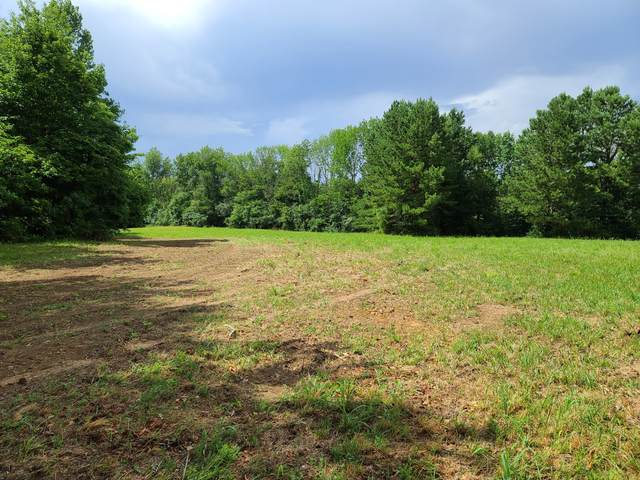 195 Pine Thicket Road, Westmoreland, TN 37186 (MLS #RTC2174279) :: Adcock & Co. Real Estate
