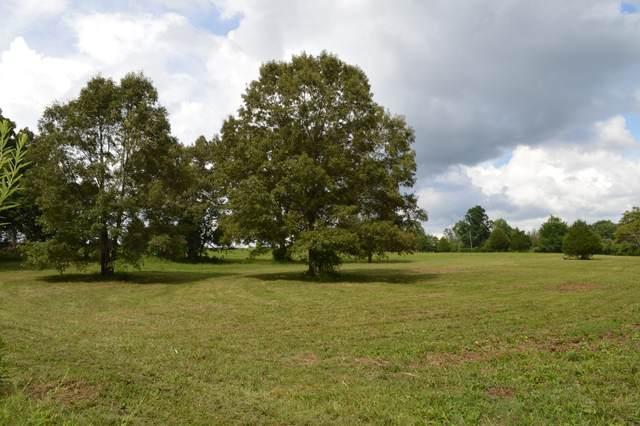 391 South Rd, Cottontown, TN 37048 (MLS #RTC2174326) :: Village Real Estate