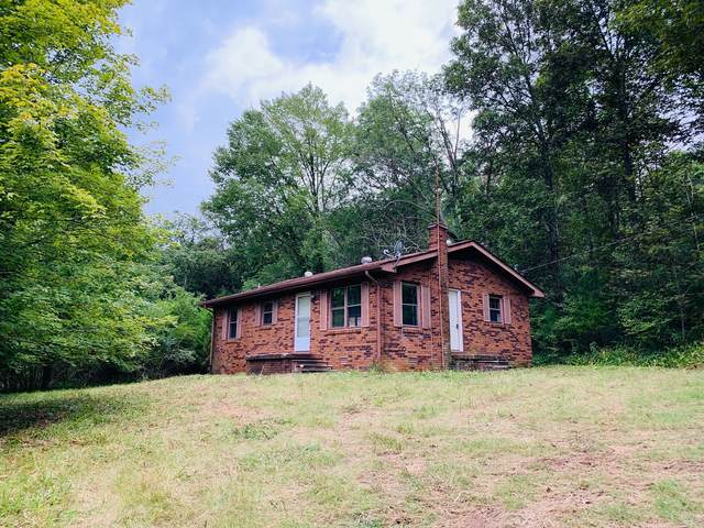 161 Gladdice Rd, Pleasant Shade, TN 37145 (MLS #RTC2175354) :: Village Real Estate