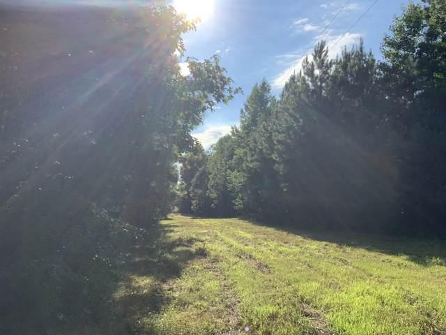 0 Allen Mill Bridge Road, Holladay, TN 38341 (MLS #RTC2175756) :: Nashville on the Move