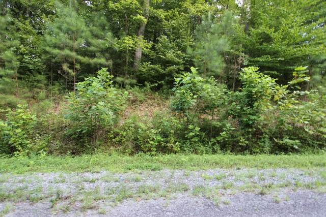 13 Autumn Trail, Dover, TN 37058 (MLS #RTC2175974) :: FYKES Realty Group