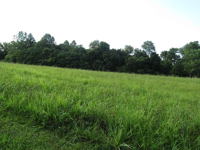 2 Bly Cemetery Rd, Manchester, TN 37355 (MLS #RTC2176246) :: Ashley Claire Real Estate - Benchmark Realty