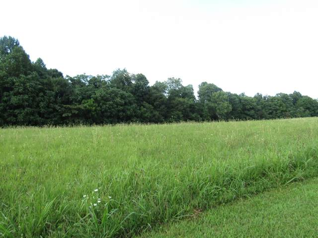3 Bly Cemetery Rd, Manchester, TN 37355 (MLS #RTC2176247) :: Ashley Claire Real Estate - Benchmark Realty
