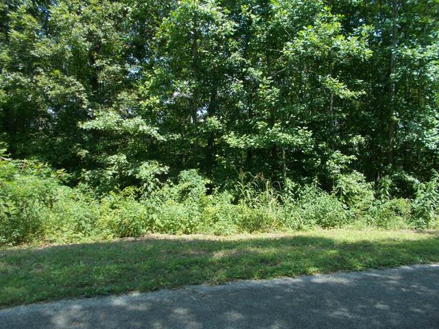 0 Simmons Ct, Ashland City, TN 37015 (MLS #RTC2176477) :: Village Real Estate