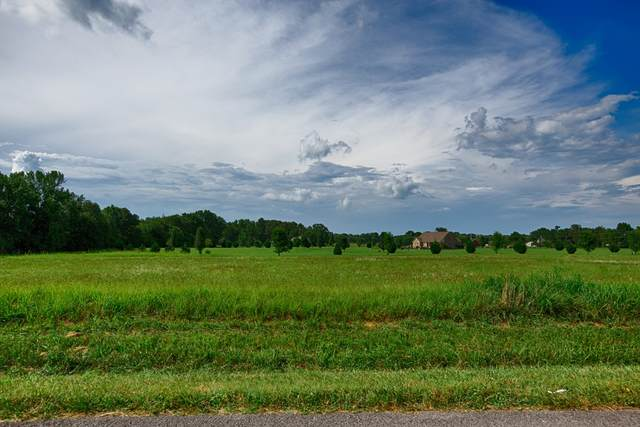 1 Union Hill Rd, Ardmore, TN 38449 (MLS #RTC2176802) :: Village Real Estate