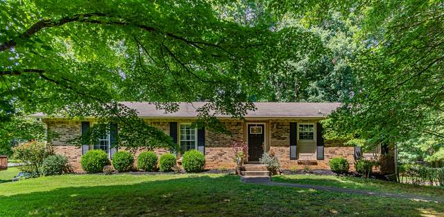 803 Alton Dr, Clarksville, TN 37043 (MLS #RTC2176869) :: Village Real Estate