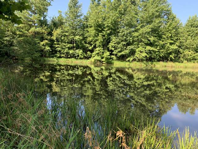 879 Sutton Hollow Rd, Leoma, TN 38468 (MLS #RTC2176904) :: Maples Realty and Auction Co.