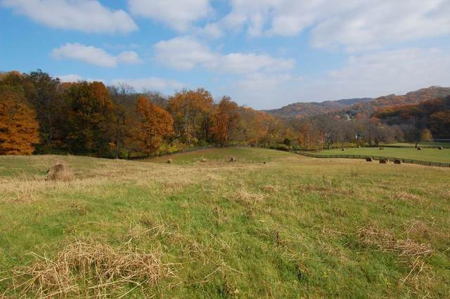 1381 Old Hillsboro Rd, Franklin, TN 37069 (MLS #RTC2177206) :: Fridrich & Clark Realty, LLC
