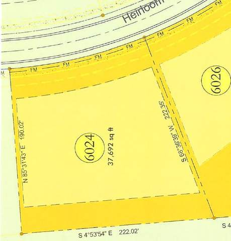 8487 Heirloom Blvd (Lot 6024), College Grove, TN 37046 (MLS #RTC2177731) :: Adcock & Co. Real Estate