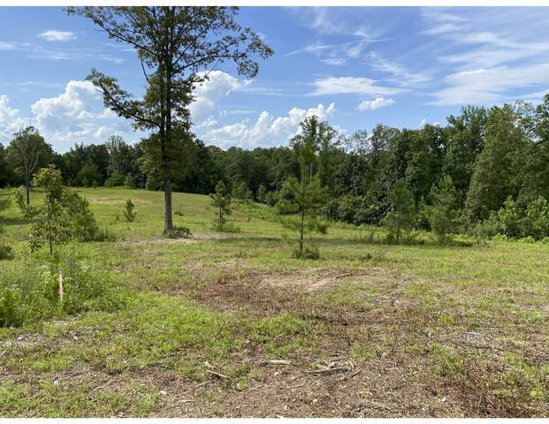 0 Vaughn Lane Track 2, Lyles, TN 37098 (MLS #RTC2177764) :: CityLiving Group