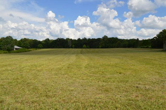 670 N Palmers Chapel Rd, White House, TN 37188 (MLS #RTC2177960) :: Village Real Estate