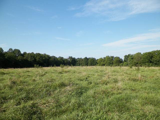 1761 Shiloh Rd, Lafayette, TN 37083 (MLS #RTC2178987) :: The Milam Group at Fridrich & Clark Realty
