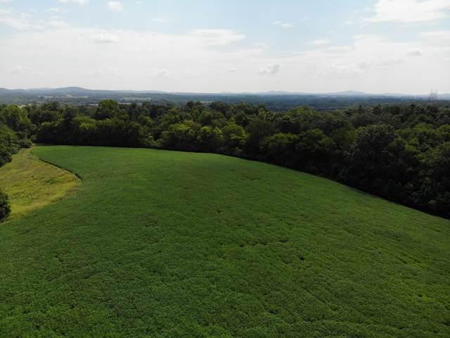2 Webb Rd, College Grove, TN 37046 (MLS #RTC2179076) :: Stormberg Real Estate Group