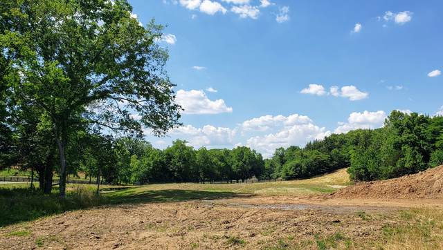 8804 Saddlebay Dr. (Lot #11037), College Grove, TN 37046 (MLS #RTC2179901) :: The Kelton Group
