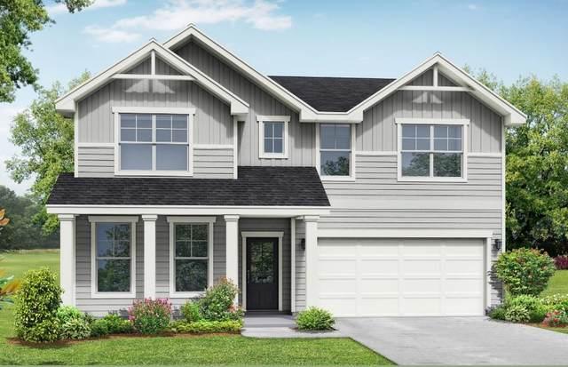 213 Snapdragon Dr, Smyrna, TN 37167 (MLS #RTC2180067) :: John Jones Real Estate LLC