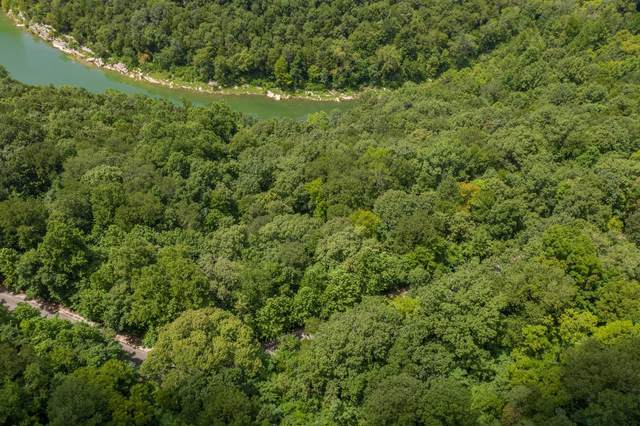 0 Harbor Pointe Dr Lot 32, Silver Point, TN 38582 (MLS #RTC2181430) :: The Helton Real Estate Group