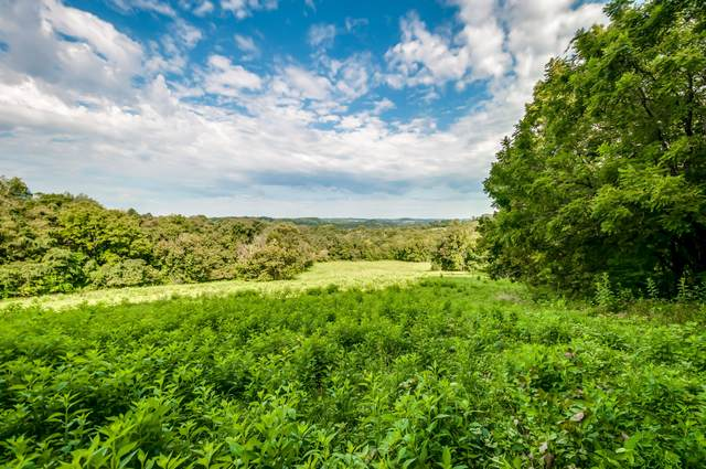 0 Dry Creek Rd E, Mount Pleasant, TN 38474 (MLS #RTC2181462) :: Village Real Estate