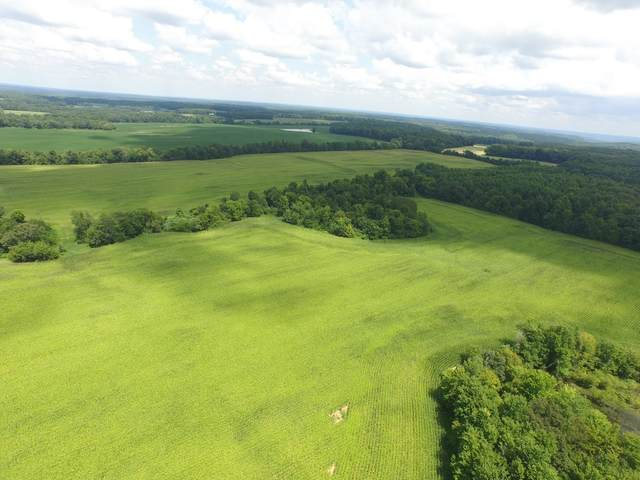 1 French Store Rd Tract 1, Big Sandy, TN 38221 (MLS #RTC2181691) :: Village Real Estate