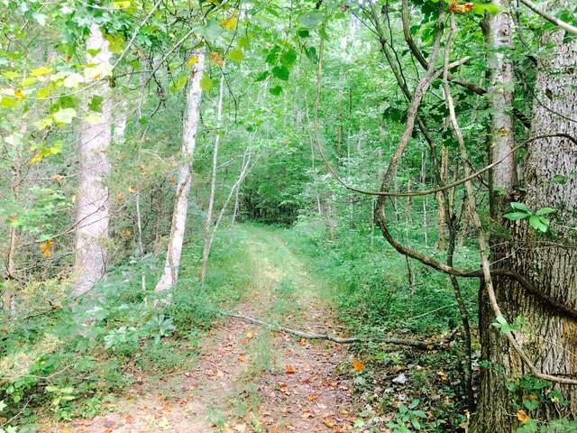 0 Short Creek Rd, Dellrose, TN 38453 (MLS #RTC2181815) :: Maples Realty and Auction Co.