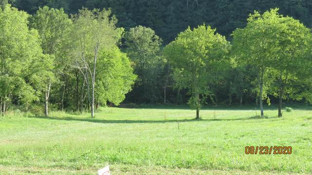 10 Johnson Hollow Rd, Watertown, TN 37184 (MLS #RTC2182491) :: Hannah Price Team