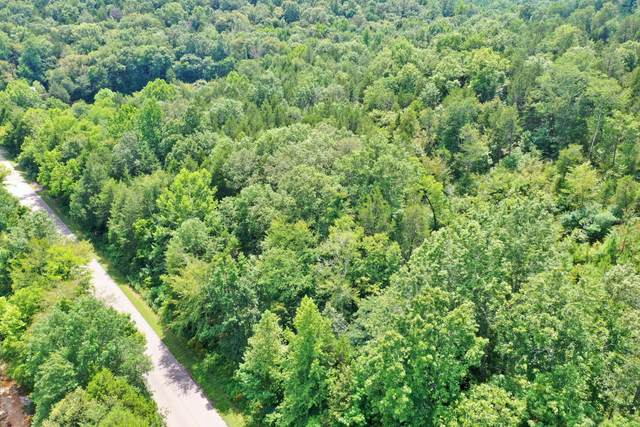 0 Mayberry Prong Rd, Linden, TN 37096 (MLS #RTC2182866) :: Nashville on the Move