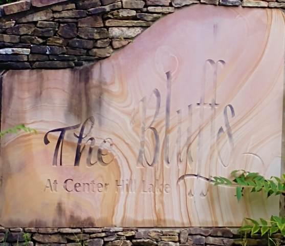 123 Stillhouse Branch Rd, Sparta, TN 38583 (MLS #RTC2183327) :: DeSelms Real Estate
