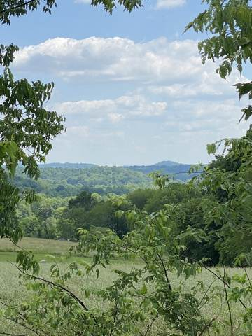 4317 Peytonsville Trinity Rd, Franklin, TN 37064 (MLS #RTC2183943) :: The Group Campbell