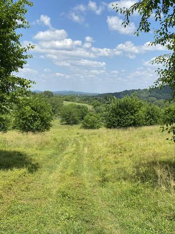 4317 Peytonsville Trinity Rd, Franklin, TN 37064 (MLS #RTC2183945) :: The Milam Group at Fridrich & Clark Realty