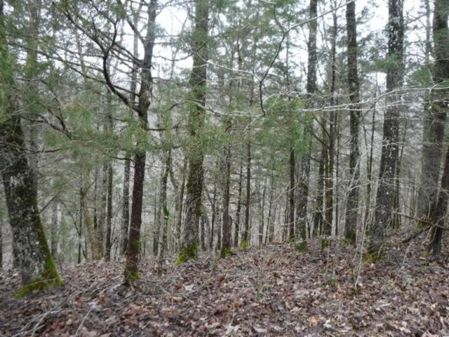 5 Backwoods Trails Lane, Celina, TN 38551 (MLS #RTC2184005) :: Nashville on the Move