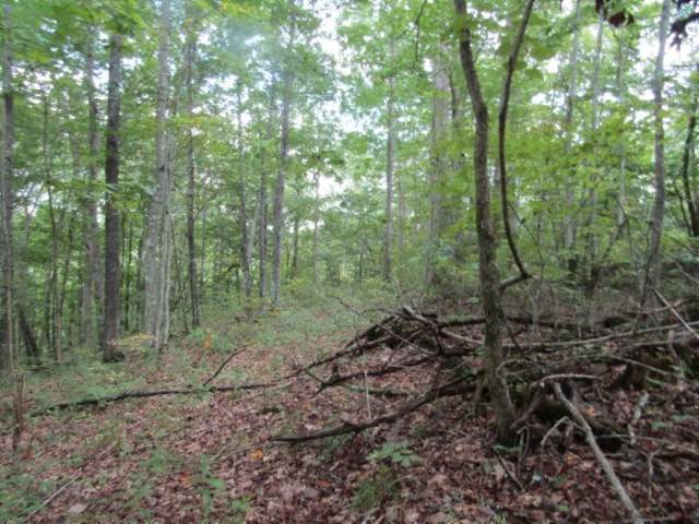5 .017Ac Backwoods Trl, Celina, TN 38551 (MLS #RTC2184079) :: Nashville on the Move