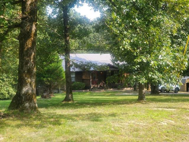 143 Jerry Smith Rd, Indian Mound, TN 37079 (MLS #RTC2185193) :: Village Real Estate