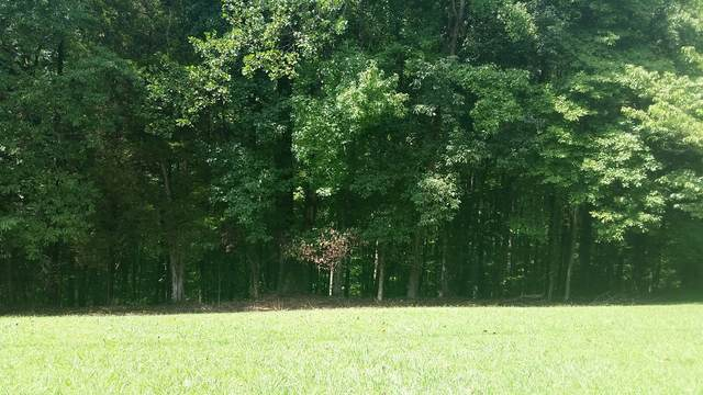 0 Damron Road  Lot 61, Estill Springs, TN 37330 (MLS #RTC2185315) :: Stormberg Real Estate Group