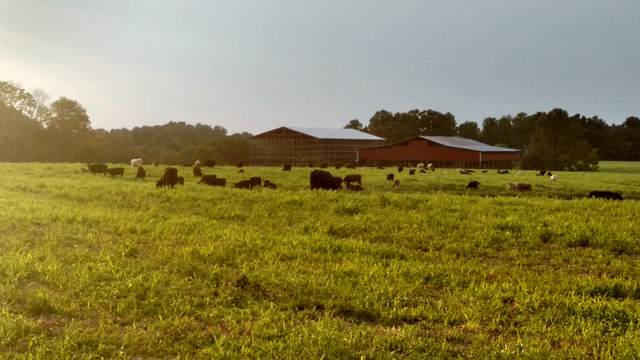 1911 Smalling Rd, Lafayette, TN 37083 (MLS #RTC2185845) :: FYKES Realty Group