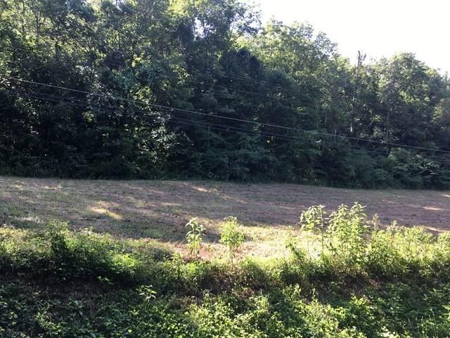 0 Neelys Creek Rd, Celina, TN 38551 (MLS #RTC2186347) :: Nashville on the Move