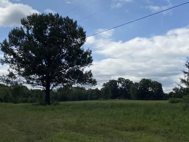 0 Big Springs Rd, Bell Buckle, TN 37020 (MLS #RTC2186571) :: Team George Weeks Real Estate