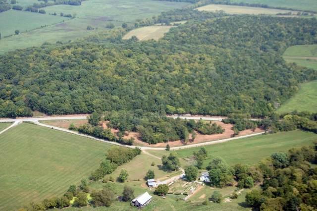 0 Liberty Pike, Bell Buckle, TN 37020 (MLS #RTC2186812) :: Team George Weeks Real Estate
