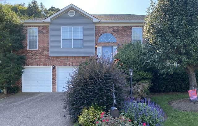 1612 Glenridge Dr, Nashville, TN 37221 (MLS #RTC2187113) :: Cory Real Estate Services