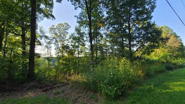 0 Coconut Ridge Rd, Smithville, TN 37166 (MLS #RTC2187187) :: The DANIEL Team | Reliant Realty ERA
