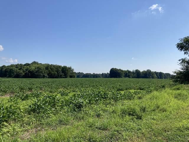 0 Rocky Mound Rd, Westmoreland, TN 37186 (MLS #RTC2187271) :: Village Real Estate
