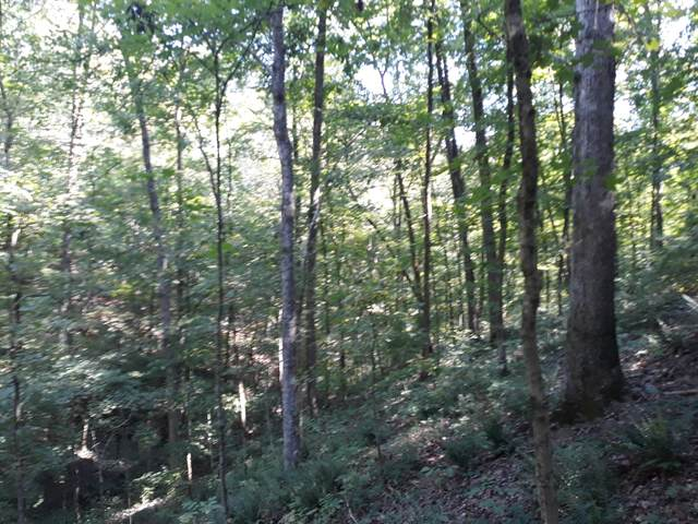0 Pond Crk Rd, Pegram, TN 37143 (MLS #RTC2187300) :: Felts Partners