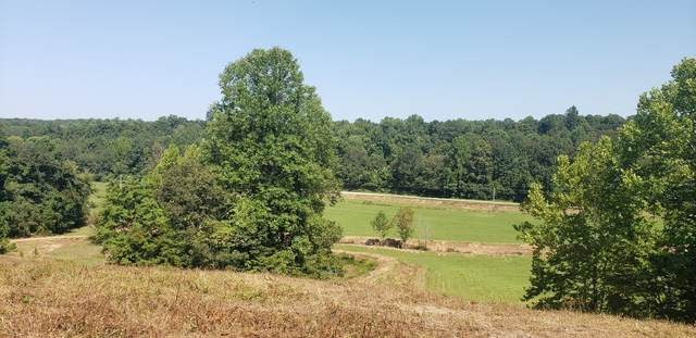 0 Little Blue Crk Rd, Mc Ewen, TN 37101 (MLS #RTC2187362) :: Village Real Estate