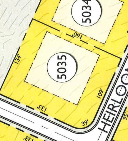 8247 Heirloom Blvd (Lot 5035), College Grove, TN 37046 (MLS #RTC2187797) :: PARKS