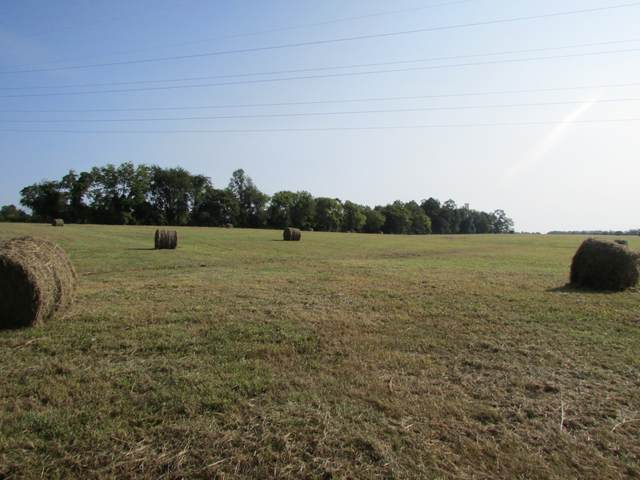 3678 Decherd Estill Rd, Decherd, TN 37324 (MLS #RTC2187957) :: RE/MAX Homes And Estates