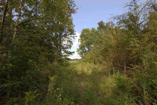 0 Scott Branch Rd, Hampshire, TN 38461 (MLS #RTC2188135) :: Village Real Estate