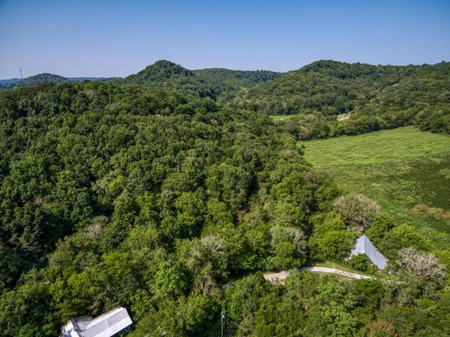 1 .77 Ac Spicebush Dr, Liberty, TN 37095 (MLS #RTC2189160) :: CityLiving Group
