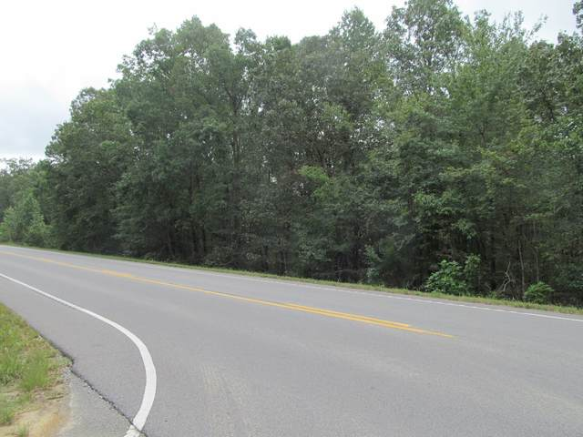 0 Hwy 412 West, Hohenwald, TN 38462 (MLS #RTC2189195) :: Maples Realty and Auction Co.