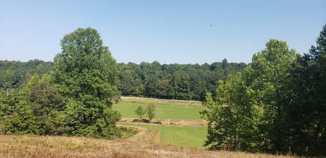 0 Little Blue Crk Rd, Mc Ewen, TN 37101 (MLS #RTC2189453) :: Village Real Estate