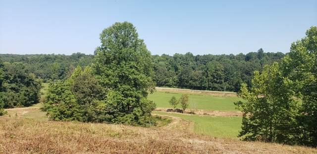 0 Little Blue Crk Rd, Mc Ewen, TN 37101 (MLS #RTC2189465) :: Village Real Estate